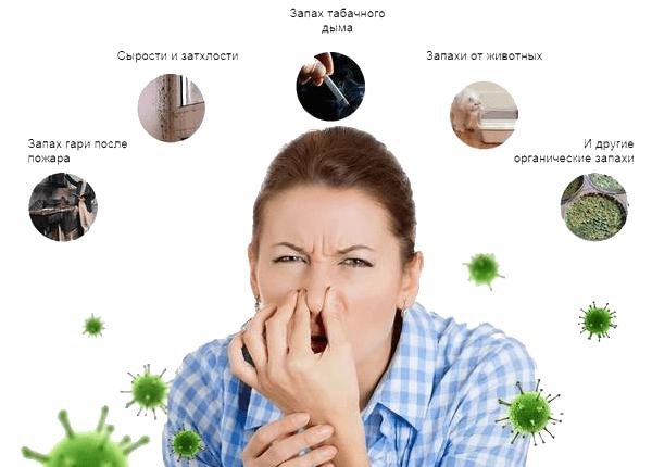 устранить неприятный запах в квартире